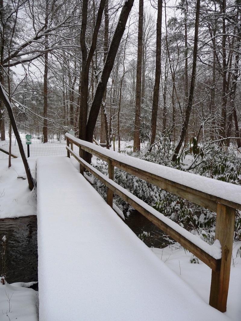 Footbridge on pasture trail
